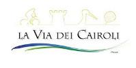 Banner La Via dei Cairoli